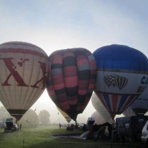 Festival Balloon Rides